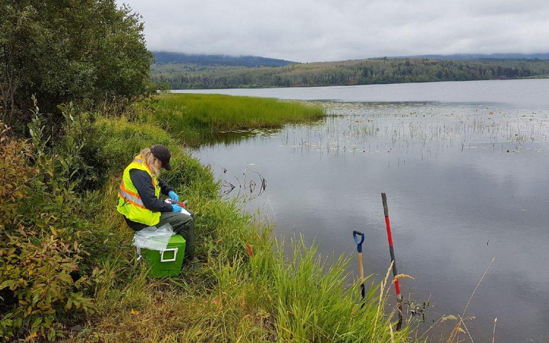 Women in Environmental Science