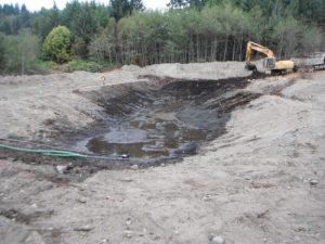 Engineered Wetland