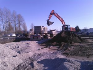 contaminated soil relocation