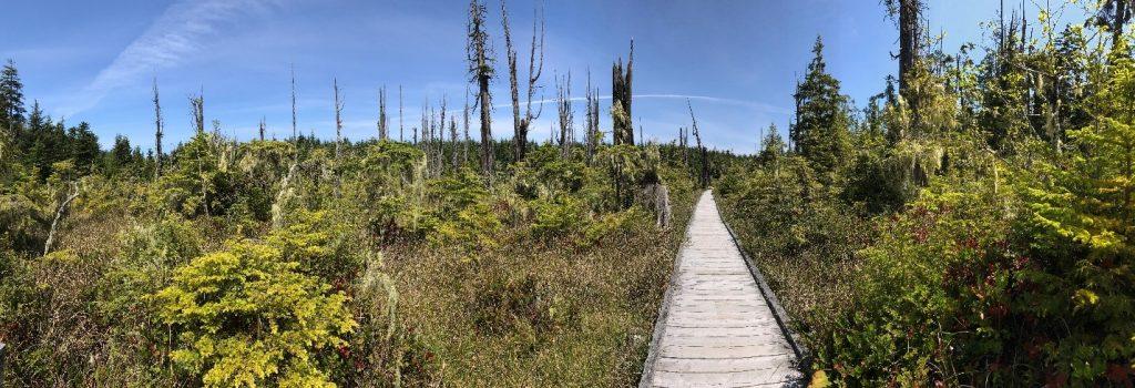 British Columbia Wetlands